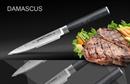 Нож кухонный стальной стейковый Samura Damascus SD-0031/G-10